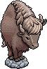 st_wildwest_buffalo